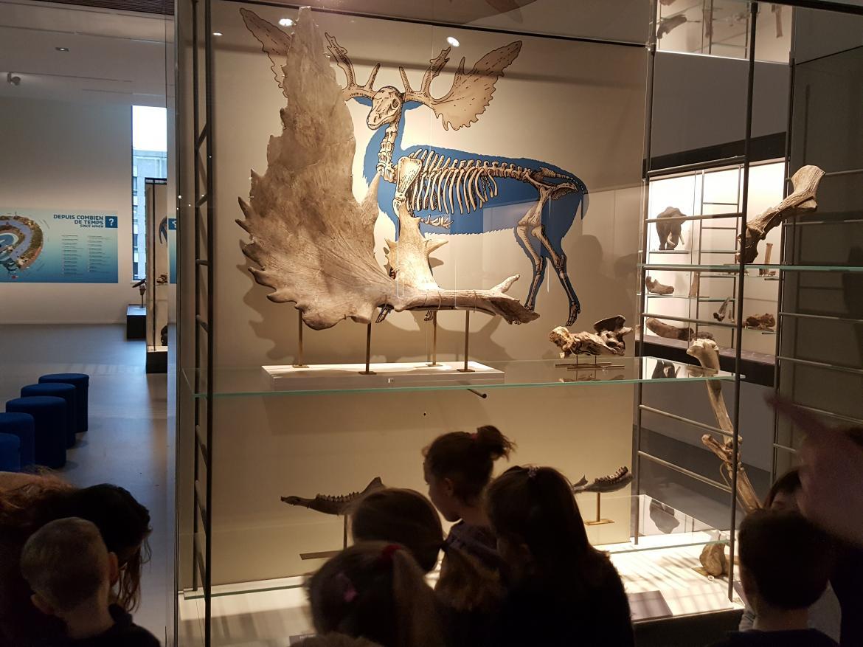 Sortie musée MS PS